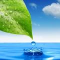 Fertilizanti NPK Hidrosolubili